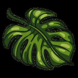 Folha tropical verde