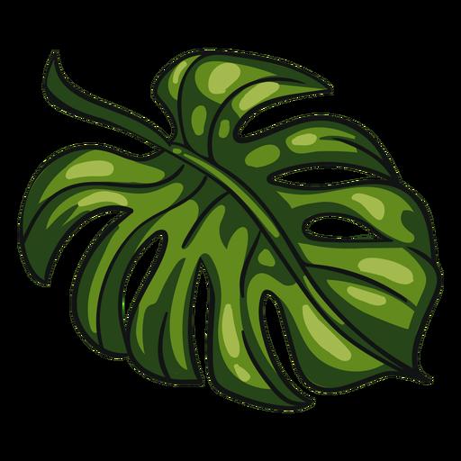 Folha tropical verde Transparent PNG