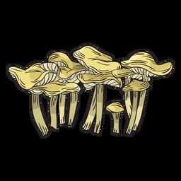 Cogumelo chanterelle mão desenhada