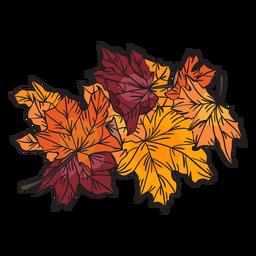 Folhas de maple mão desenhada