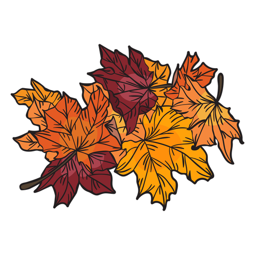 Hand drawn maple leaves Transparent PNG