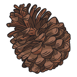 Cono de pino dibujado a mano