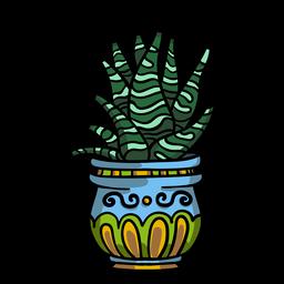 Snake plant pot