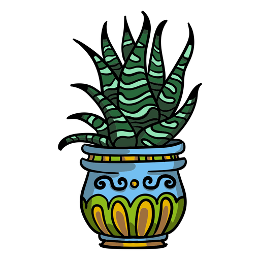 Snake plant pot Transparent PNG