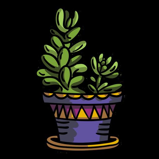 Succulent plant pot Transparent PNG