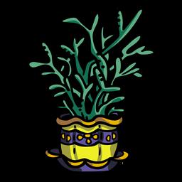 Planta de vaso suculenta
