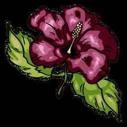 Hibisco de flores tropicais