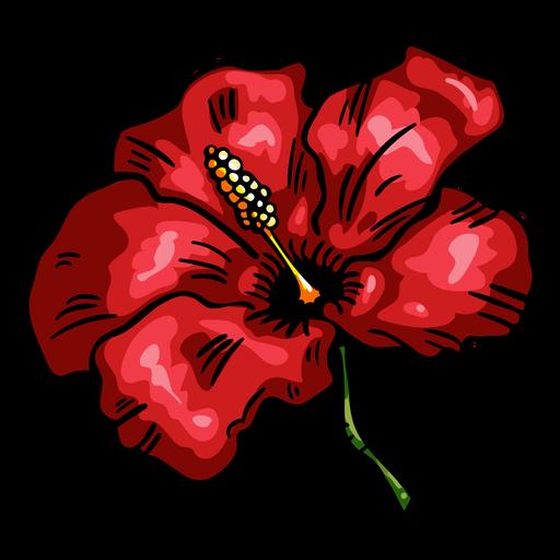 Flor tropical hibisco rojo Transparent PNG