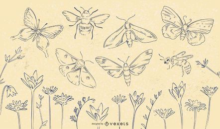 Conjunto de traços de flores de insetos primavera