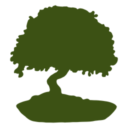 Silhuetas de árvore bonsai