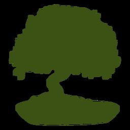 Siluetas de árboles bonsai