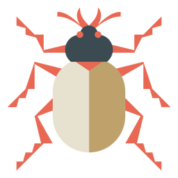 Colorful beetle geometric flat