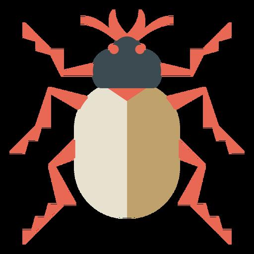 Colorful beetle geometric flat