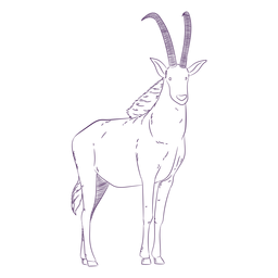 Wild animal antelope hand drawn