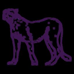Dibujado a mano animal salvaje guepardo