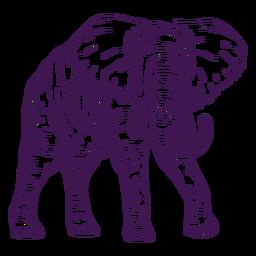 Elefante de animal selvagem desenhado à mão