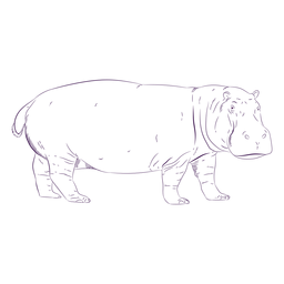Mão de hipopótamo animal selvagem desenhada