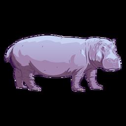 Animal salvaje hipopótamo dibujado a mano colorido