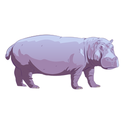 Animal selvagem hipopótamo desenhado à mão colorido