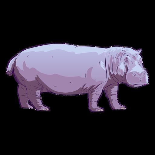 Animal salvaje hipopótamo dibujado a mano colorido Transparent PNG