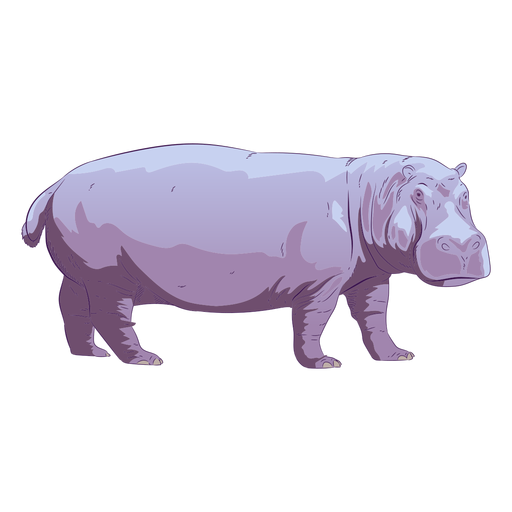 Wild animal hippo hand drawn colorful Transparent PNG