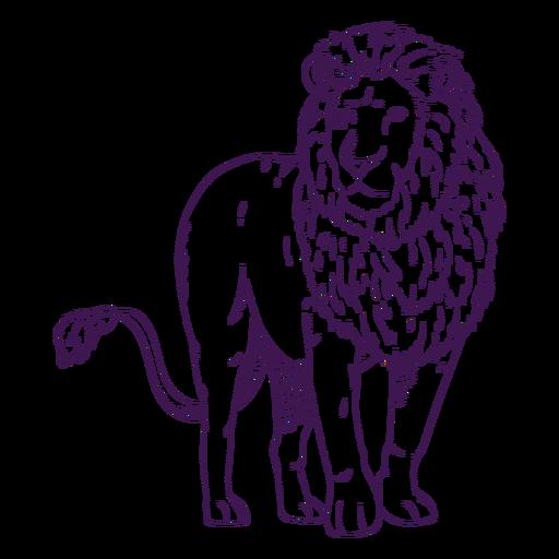 Dibujado a mano león animal salvaje