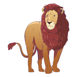 Wild animal lion hand drawn colorful