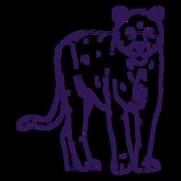 Mão de tigre animal selvagem desenhada