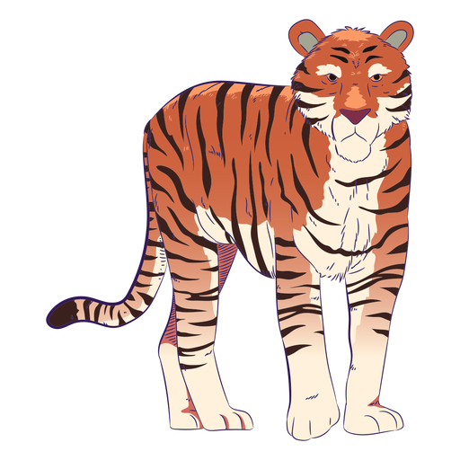 Tigre animal salvaje dibujado a mano colorido Transparent PNG