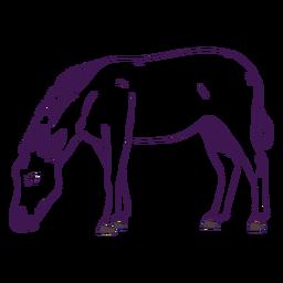Dibujado a mano animal salvaje cebra