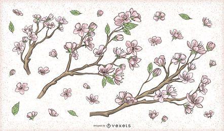Projetos de galhos de árvores de flores em flor de cerejeira