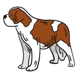 Swiss mountain dog animal illustration