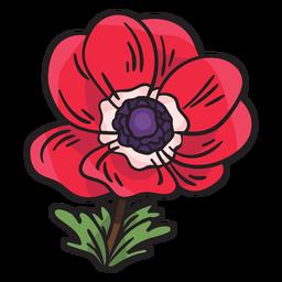 Ilustración de flor de anémona calanit