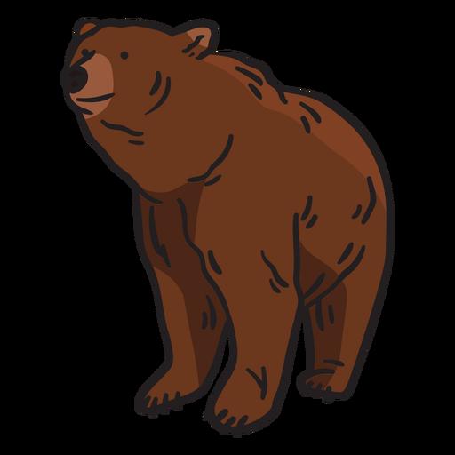 Ilustración de oso marrón animal Transparent PNG