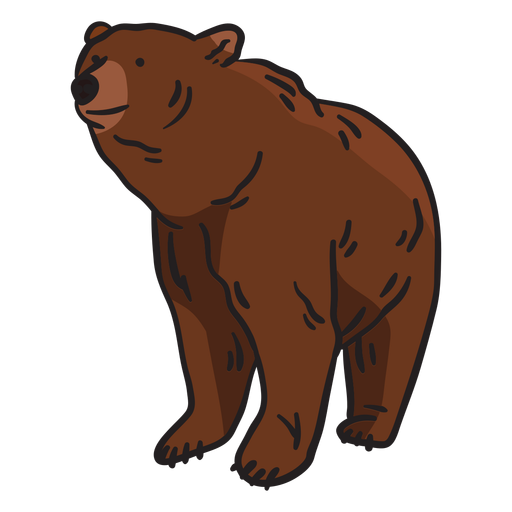 Oso animal marrón ilustración Transparent PNG