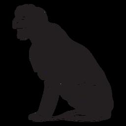 Dog terrier black