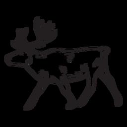 Elk moose animal stroke