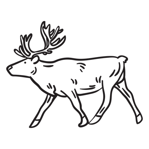Elk alce animal accidente cerebrovascular Transparent PNG