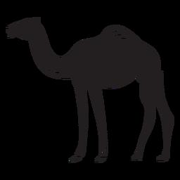 Corcunda animal camelo preto