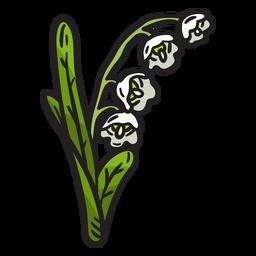 Ilustración de flor de lirio de los valles