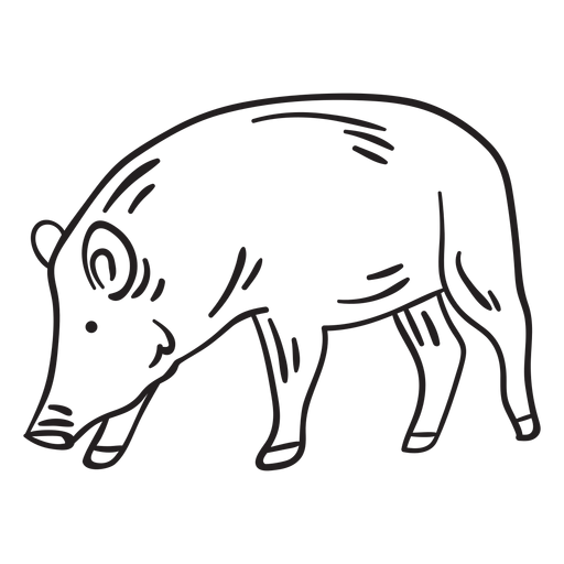 Mammal snout animal pig stroke Transparent PNG