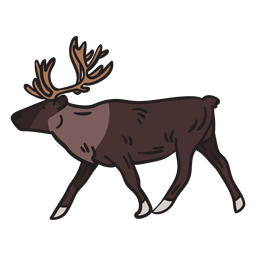 Moose animal antlers illustration