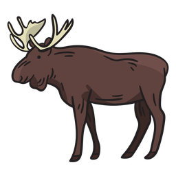 Moose deer illustration