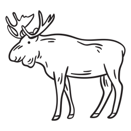 Moose elk animal stroke