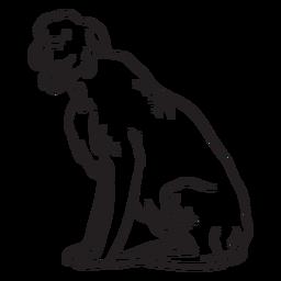 Pet animal dog terrier stroke