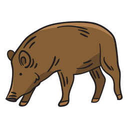 Pig native breed sweden illustration