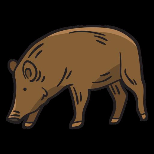 Pig native breed sweden illustration