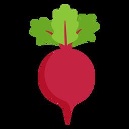 Plano vegetal de remolacha