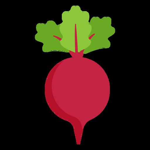 Beetroot vegetable flat