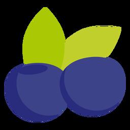 Fruta de mirtilo plana